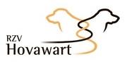RZV logo