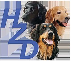 hzd-logo