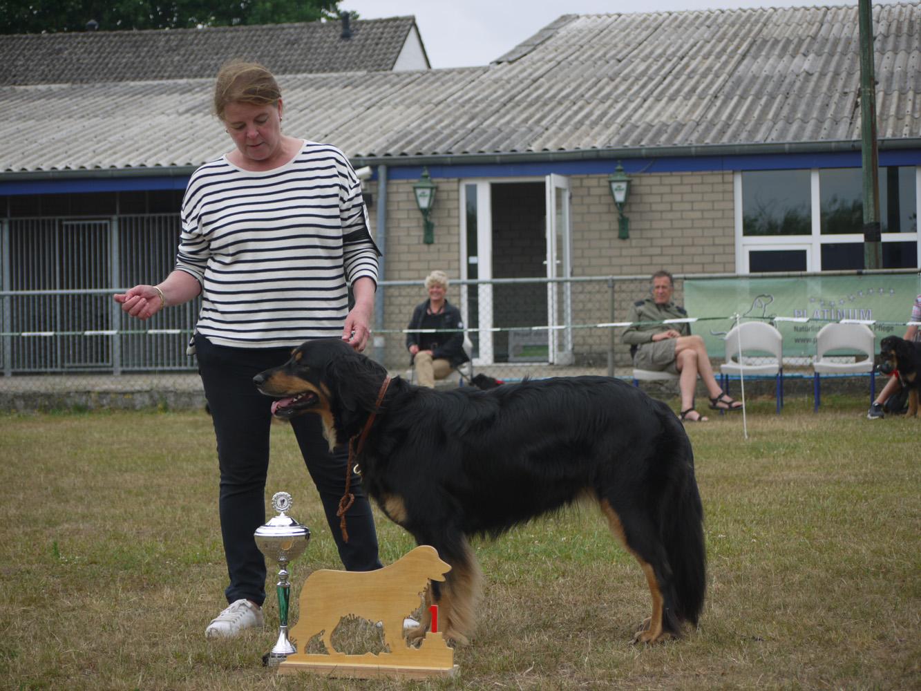 kampioenschapsclubmatch Hovawart Rasvereniging Nederland 2017